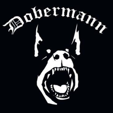 DOBERMANN – Punk-Rock Band